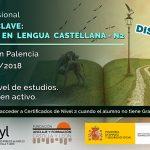 COMPETENCIA CLAVE: COMUNICACIÓN EN LENGUA CASTELLANA - N2