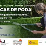 Curso de Técnicas de Poda en Palencia