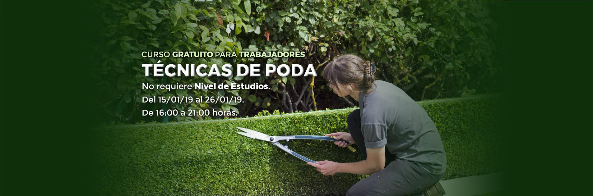 Curso de Poda en Palencia
